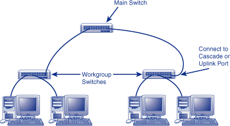wiring multiple network switches basic wiring diagram u2022 rh rnetcomputer co Multiple Outlet Wiring Diagram Multiple Switch Wiring Diagram